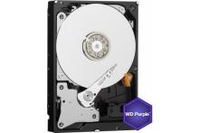 DD 3.5   SATA III WESTERN DIGITAL Purple - 6To